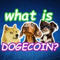 My DogePal